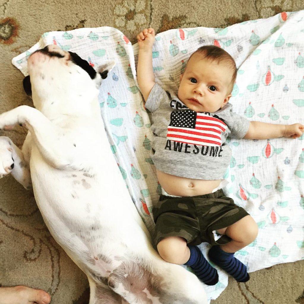 Best friends ❤️ #8weeksold #frenchbulldogsofinstagram #frenchie #cmcn #puppiesandbabies #humphrythefrenchie