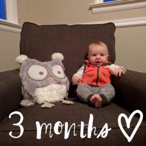 On the blog Cannon  3 month check in Linkhellip