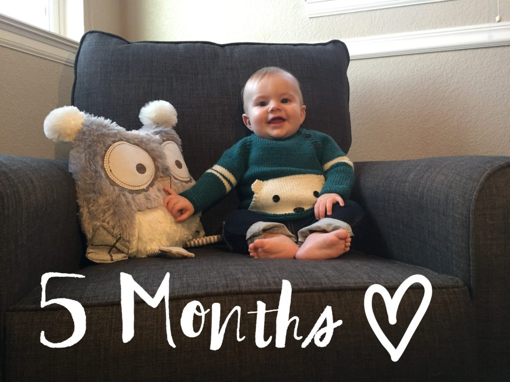 5 Months, Baby Boy, Monthly Picture