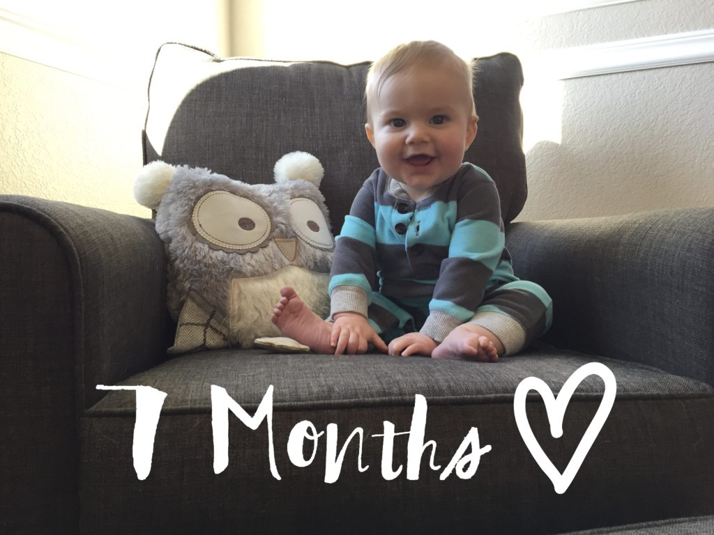 7 month old baby, monthly picture