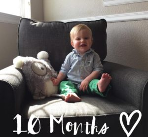 Cannon is already ten months old! He has changed sohellip
